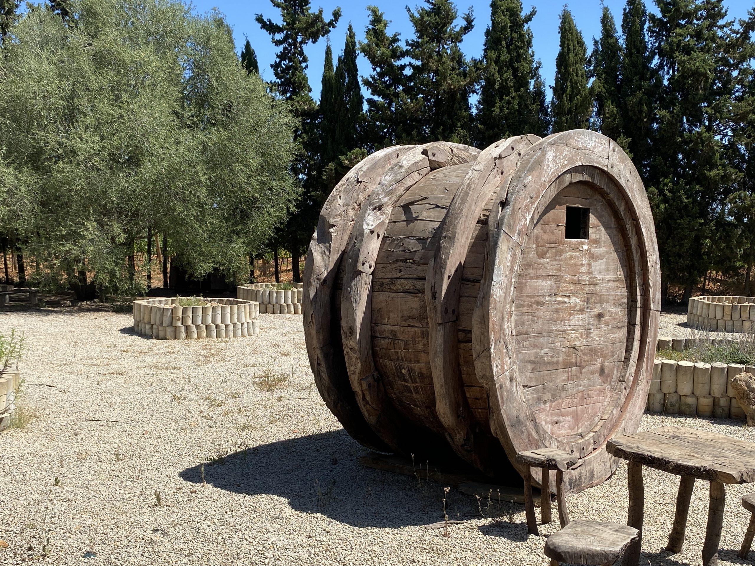 Can Davero Wein und Oliven